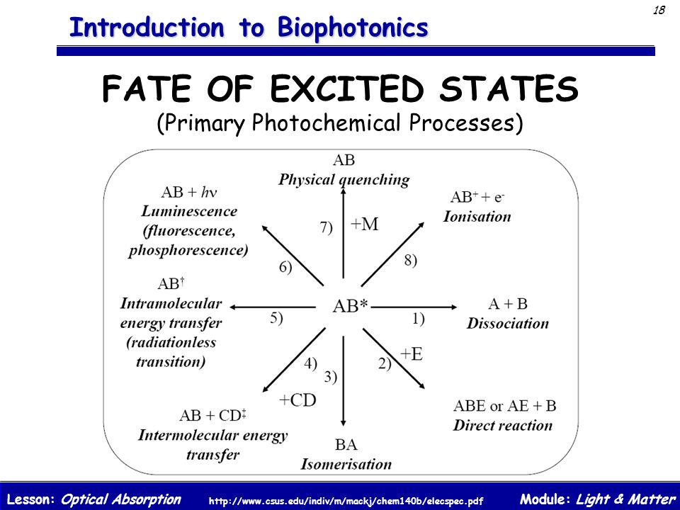FATE OF EXCITED STATES (Primary Photochemical Processes)
