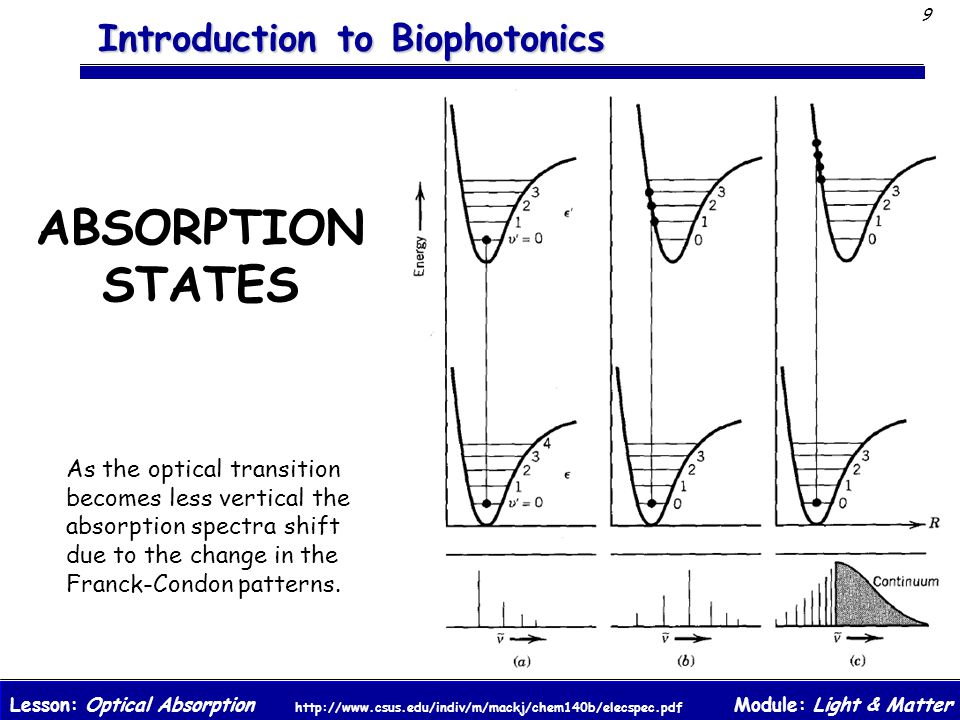 ABSORPTION STATES As the optical transition becomes less vertical the absorption spectra shift due to the change in the Franck-Condon patterns.