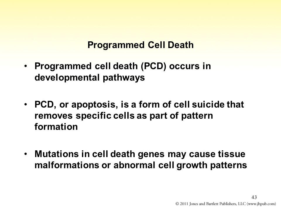 Programmed Cell Death Programmed cell death (PCD) occurs in developmental pathways.