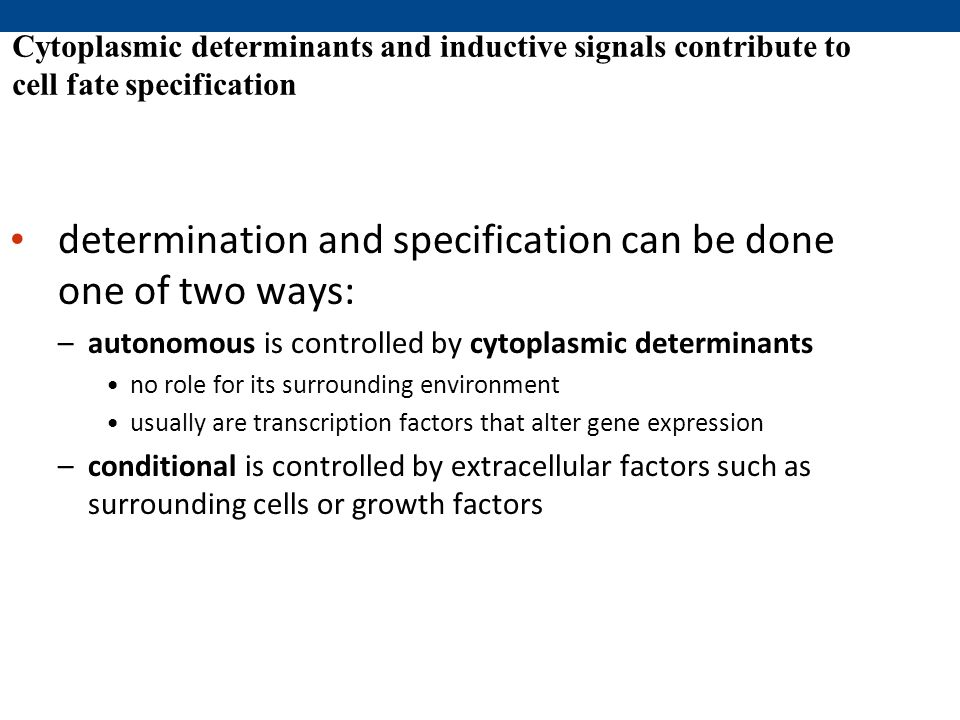 determination and specification can be done one of two ways: