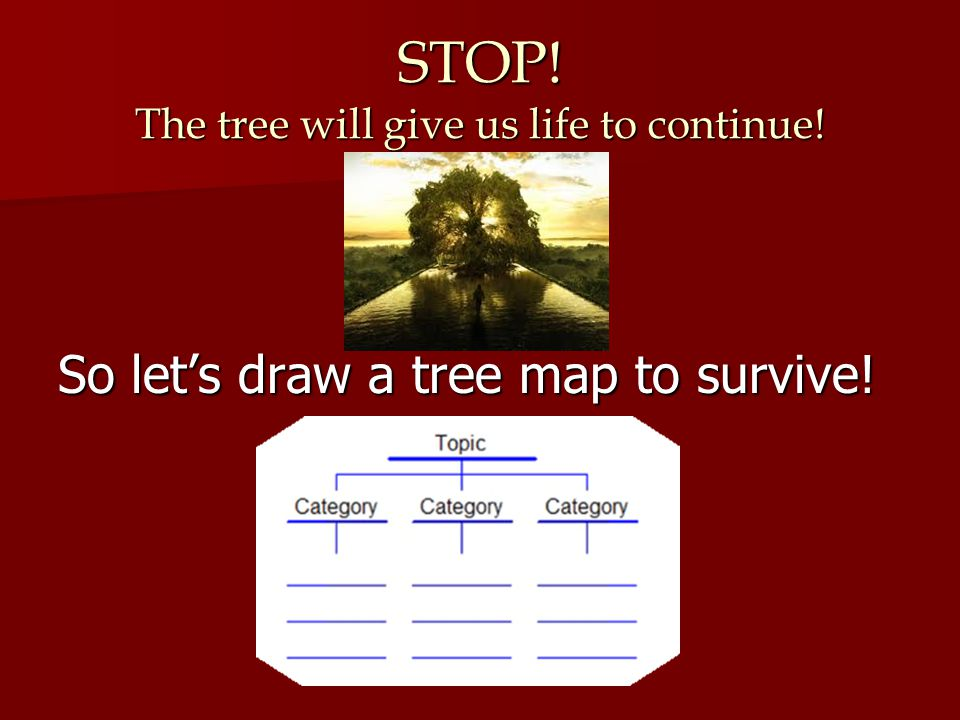 STOP! The tree will give us life to continue!