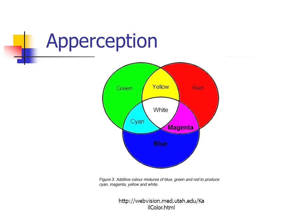 Apperception http://webvision.med.utah.edu/KallColor.html