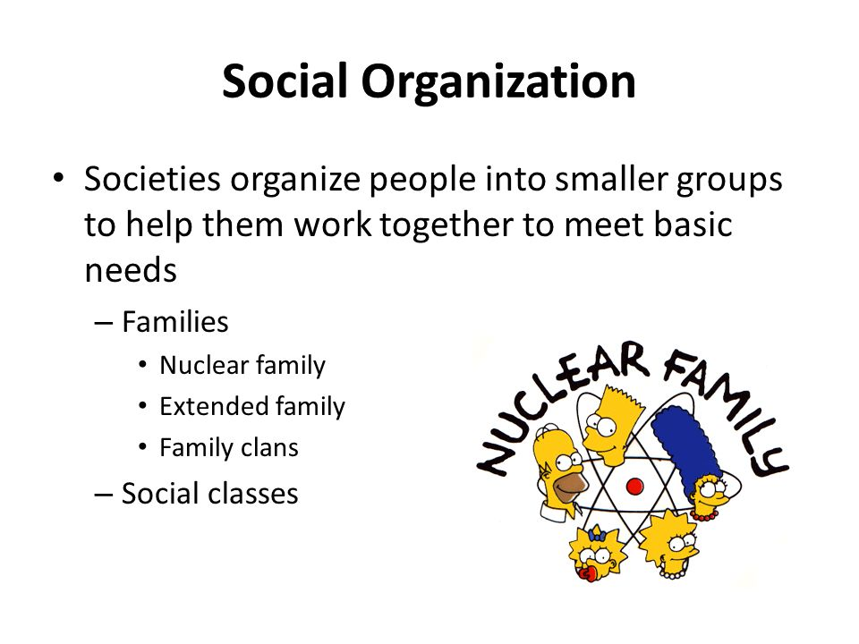 Social Organization Societies organize people into smaller groups to help them work together to meet basic needs.