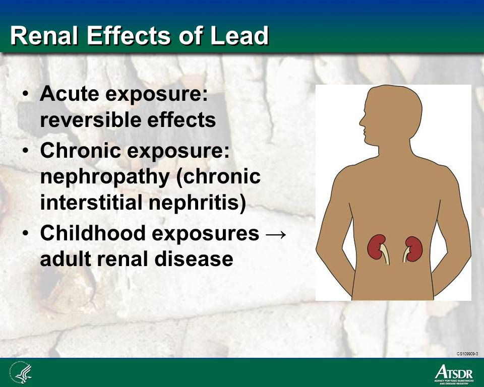 Renal Effects of Lead Acute exposure: reversible effects