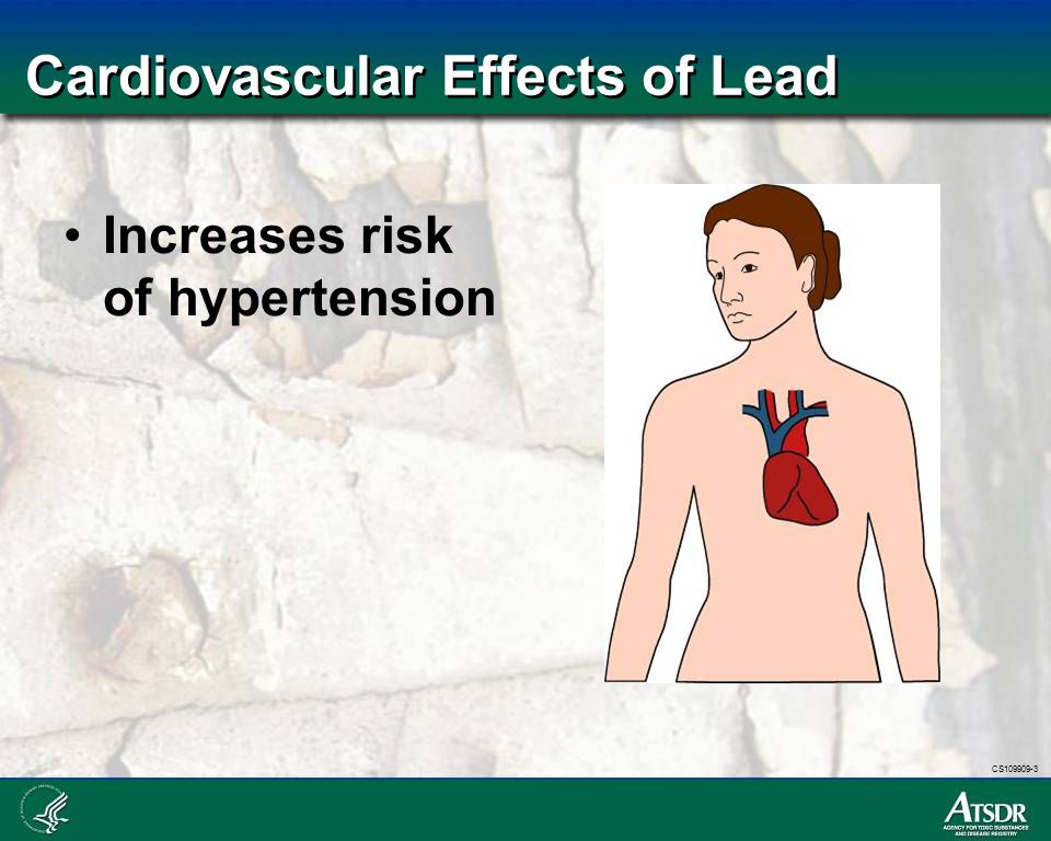 Cardiovascular Effects of Lead