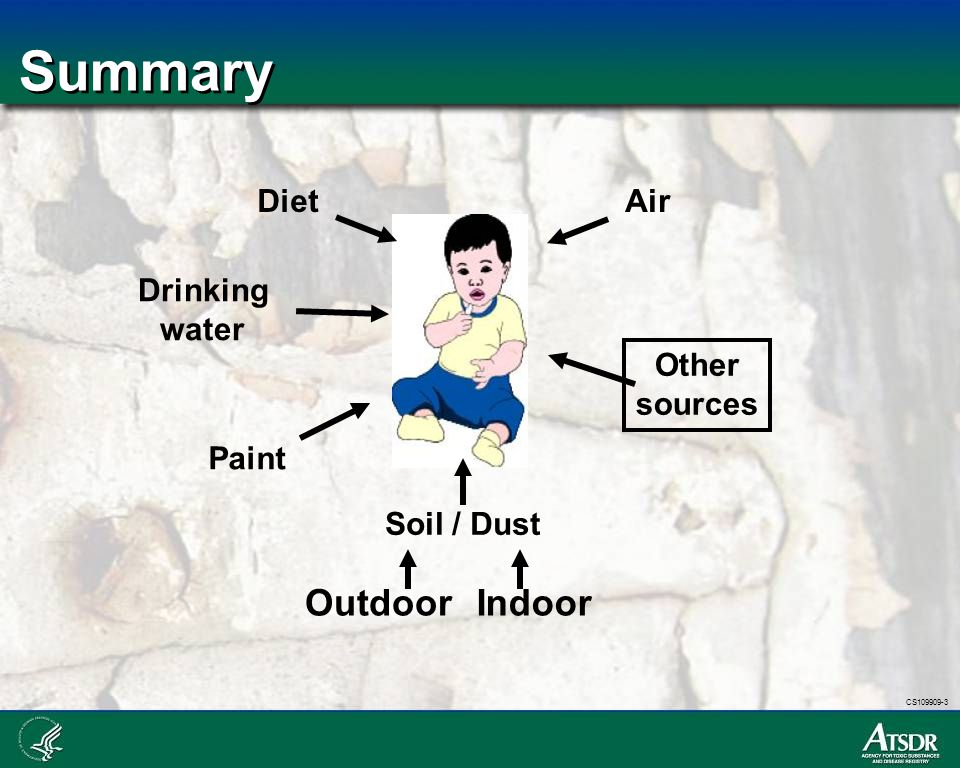 Summary Outdoor Indoor Diet Drinking water Paint Soil / Dust Air