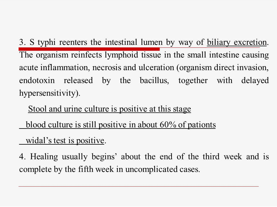 3. S typhi reenters the intestinal lumen by way of biliary excretion