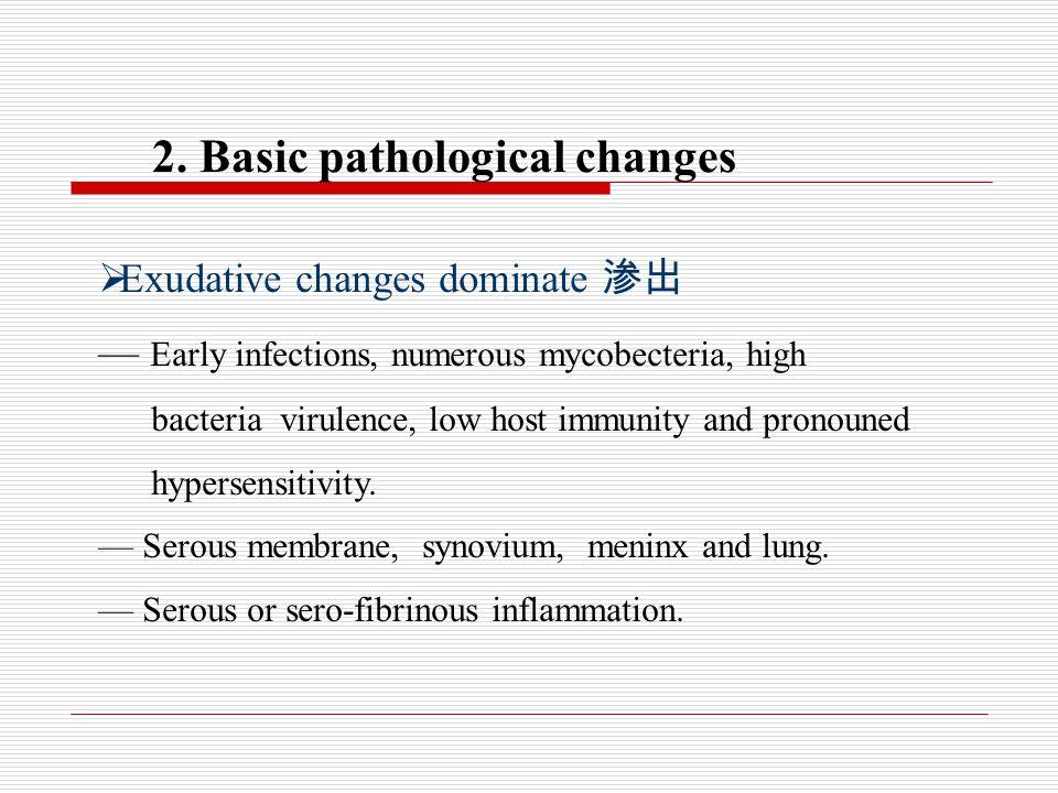 2. Basic pathological changes