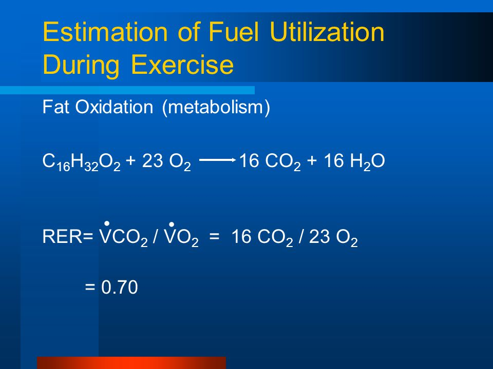 Estimation of Fuel Utilization During Exercise