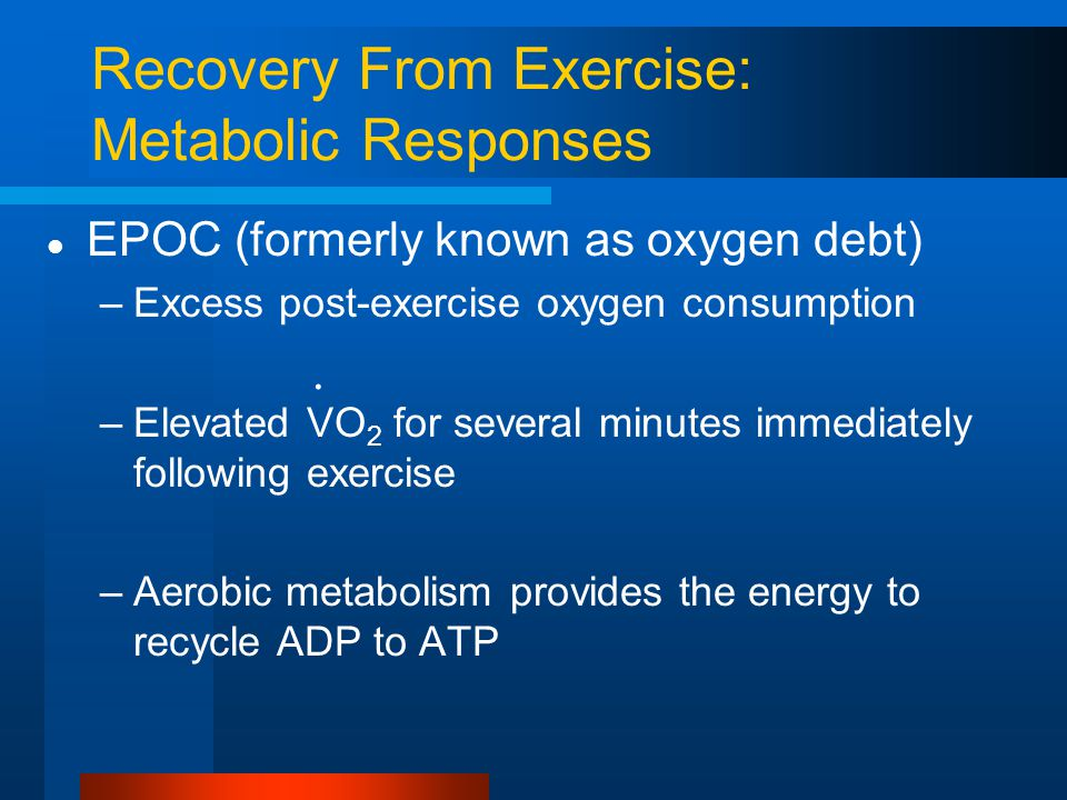 Recovery From Exercise: Metabolic Responses