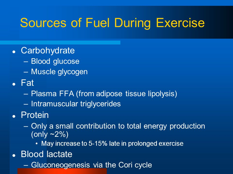 Sources of Fuel During Exercise