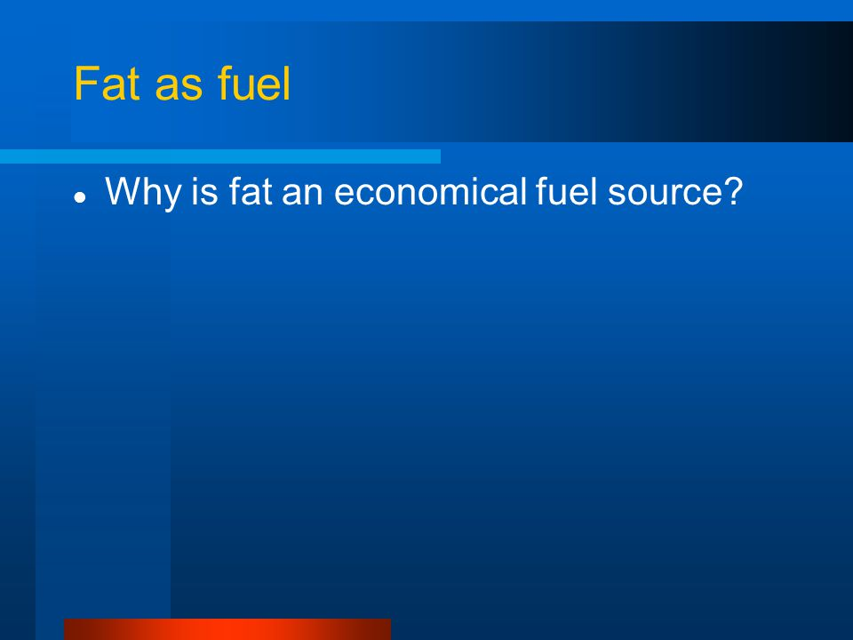 Fat as fuel Why is fat an economical fuel source