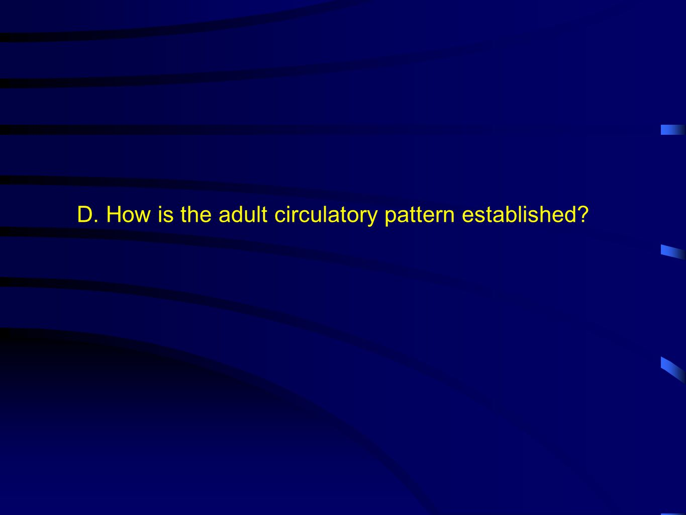 D. How is the adult circulatory pattern established