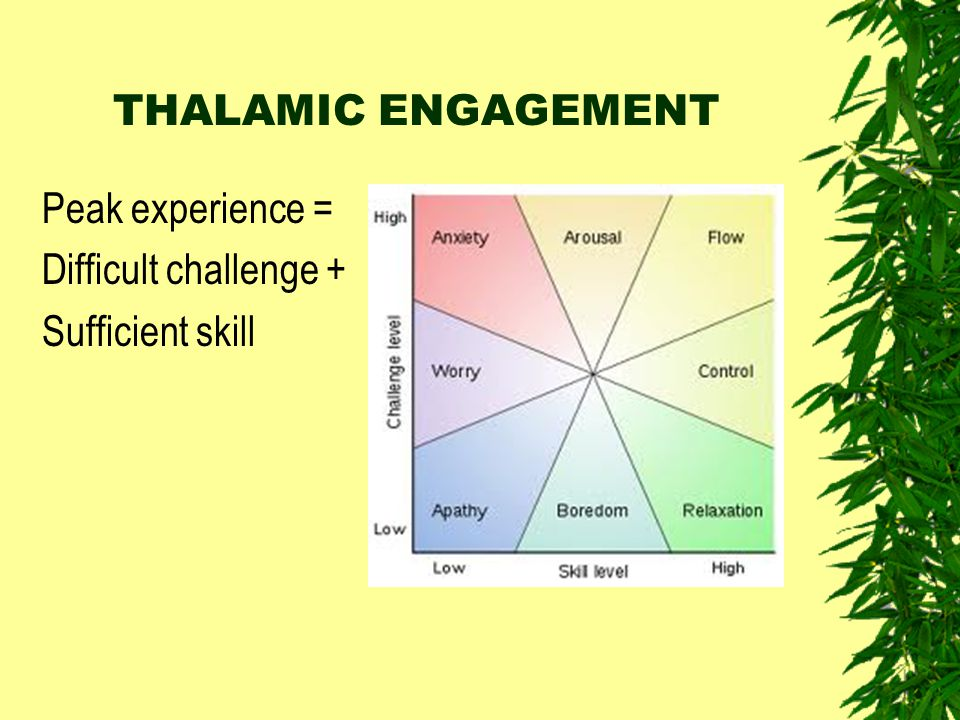 THALAMIC ENGAGEMENT Peak experience = Difficult challenge + Sufficient skill