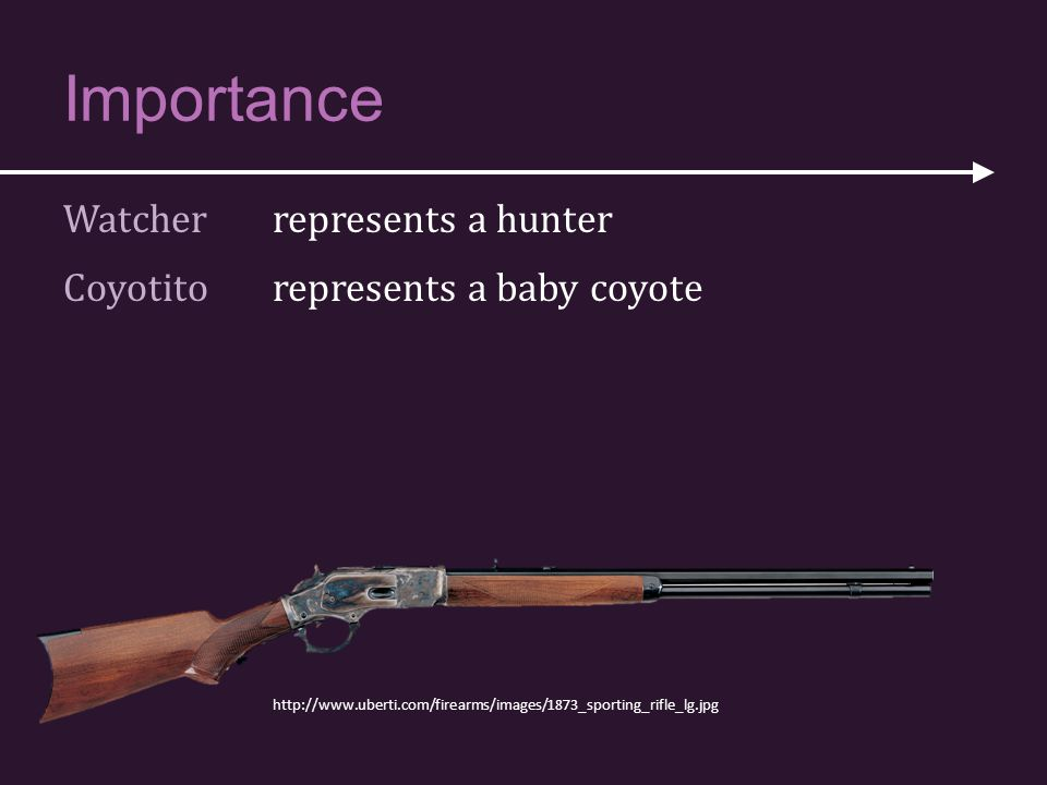 Importance Watcher represents a hunter Coyotito represents a baby coyote