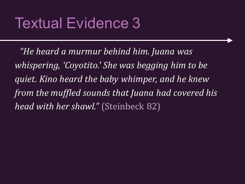 Textual Evidence 3