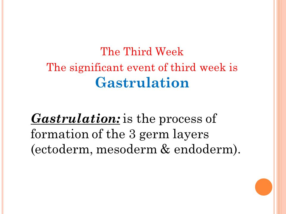 The significant event of third week is Gastrulation