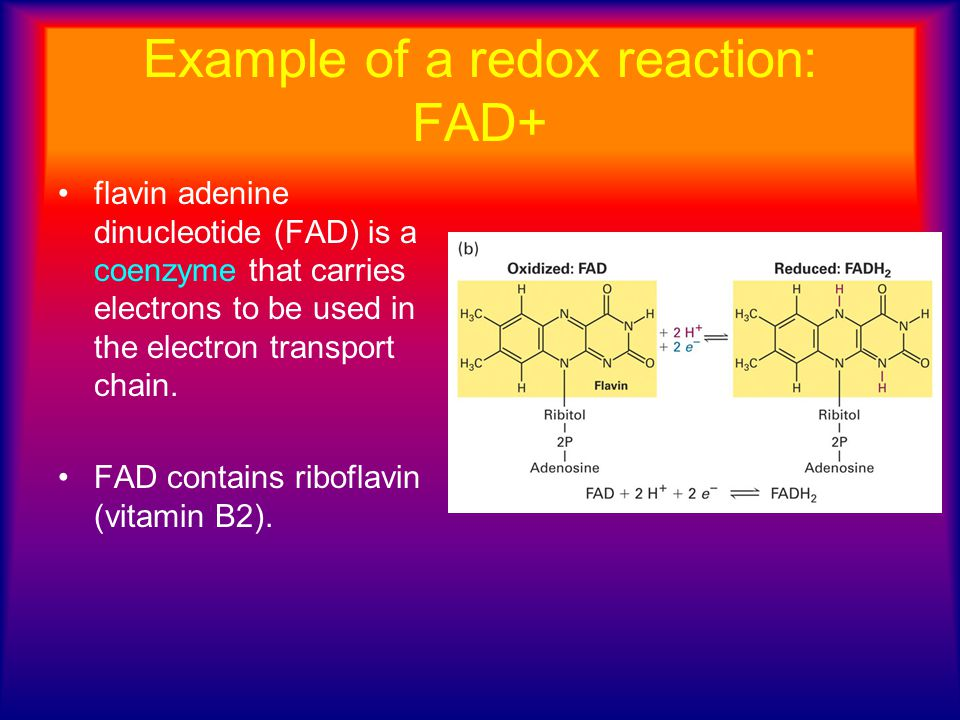 Example of a redox reaction: FAD+