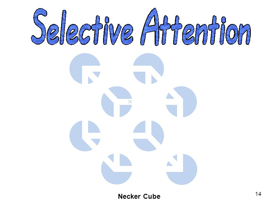 OBJECTIVE 1| Describe the interplay between attention and perception.