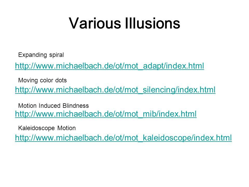 Various Illusions http://www.michaelbach.de/ot/mot_adapt/index.html