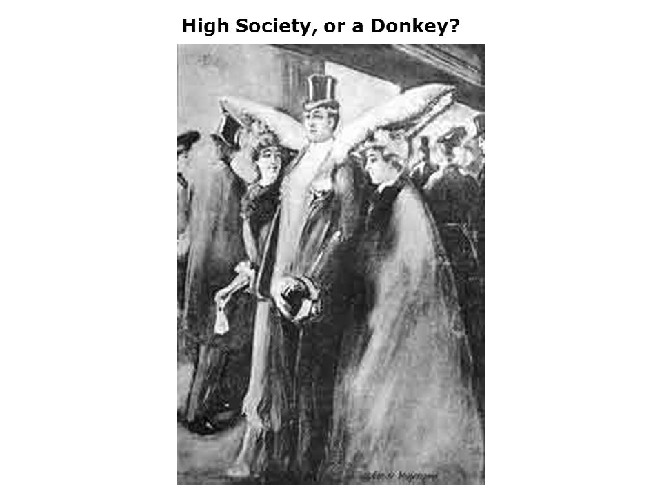 High Society, or a Donkey