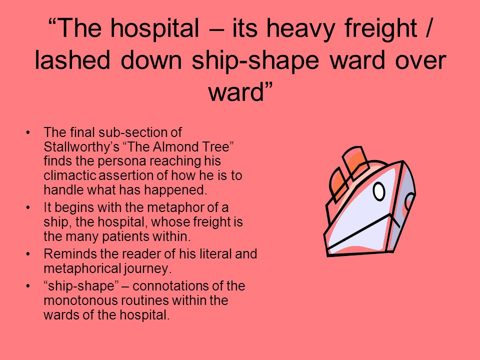 The hospital – its heavy freight / lashed down ship-shape ward over ward