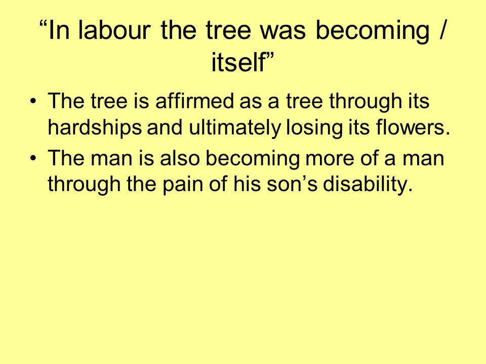 In labour the tree was becoming / itself