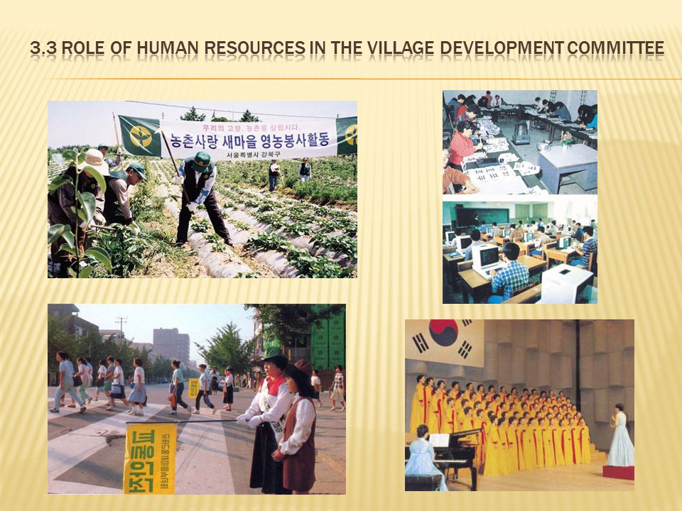 3.3 Role of Human Resources in the Village Development Committee