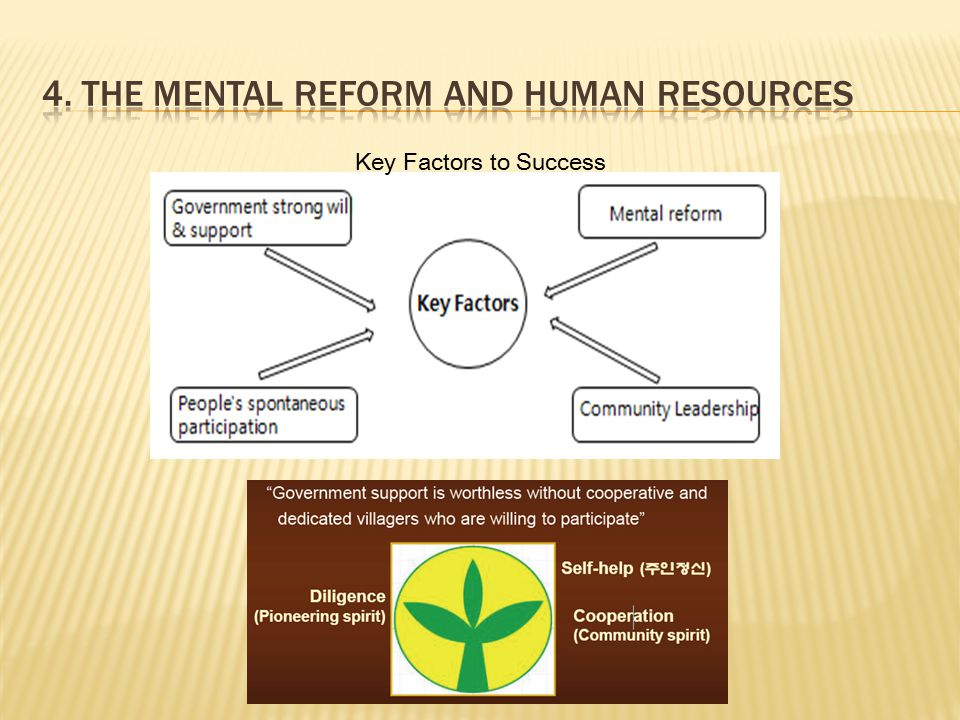 4. The Mental Reform and Human Resources