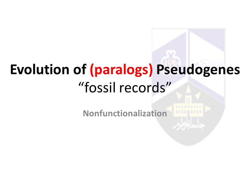 Evolution of (paralogs) Pseudogenes fossil records