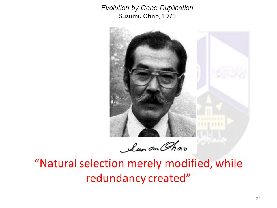Natural selection merely modified, while redundancy created