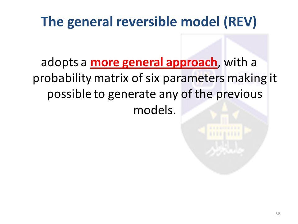 The general reversible model (REV)