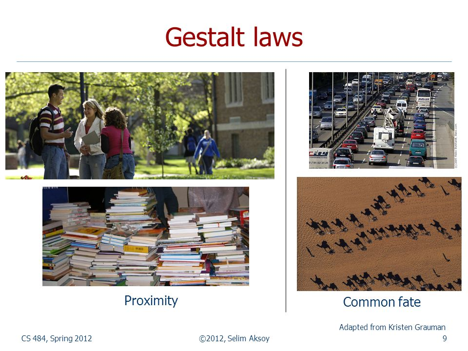Gestalt laws Proximity Common fate Adapted from Kristen Grauman