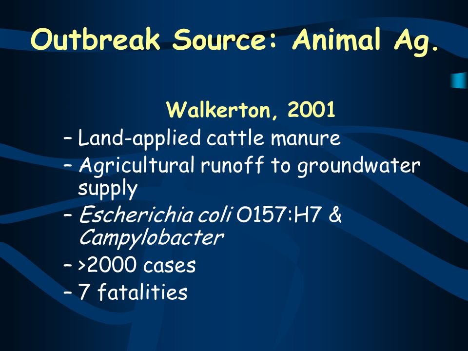 Outbreak Source: Animal Ag.