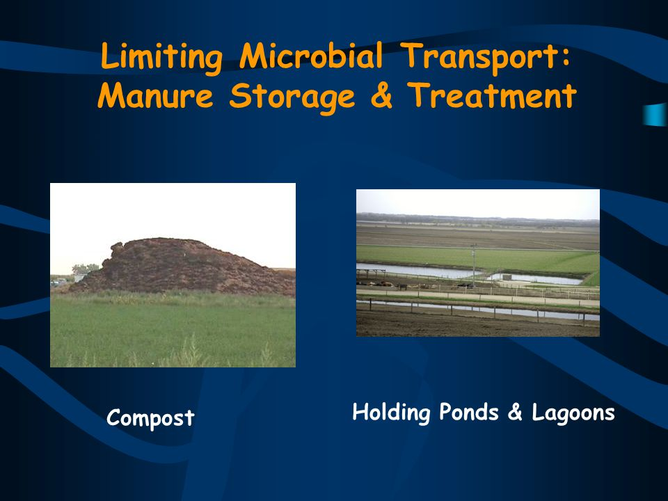 Limiting Microbial Transport: Manure Storage & Treatment