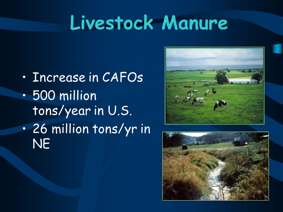 Livestock Manure Increase in CAFOs 500 million tons/year in U.S.