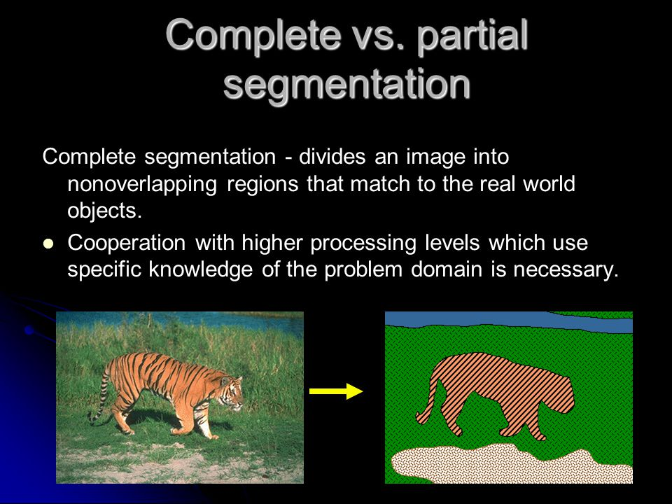 Complete vs. partial segmentation