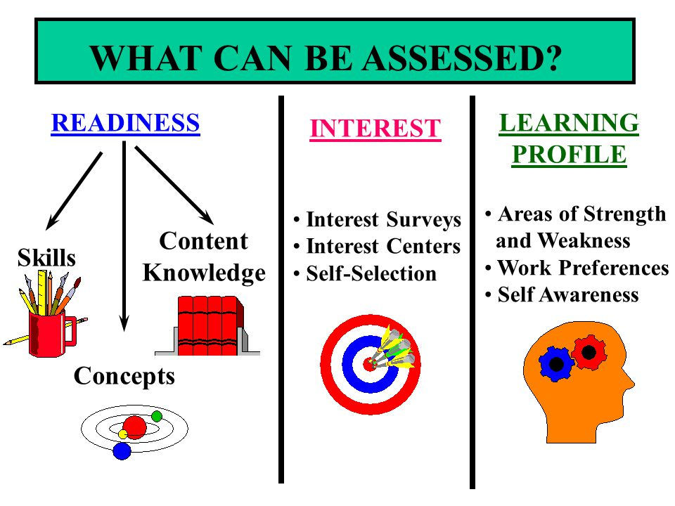 WHAT CAN BE ASSESSED READINESS LEARNING PROFILE INTEREST Content