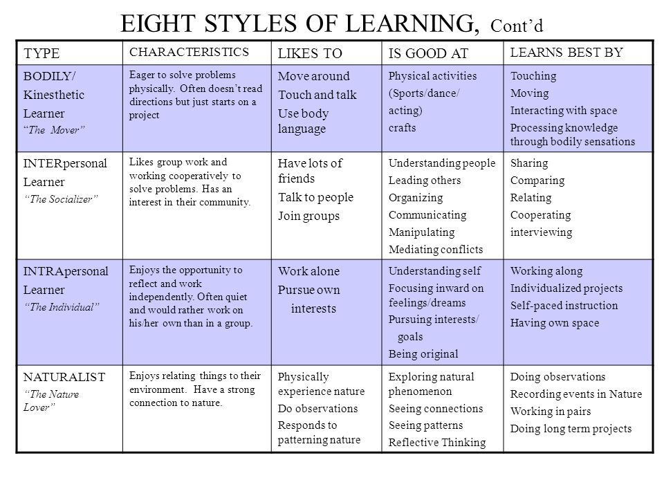 EIGHT STYLES OF LEARNING, Cont'd