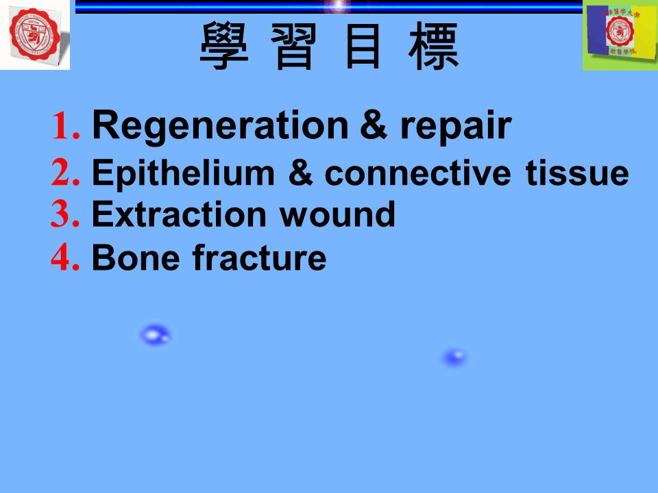 學 習 目 標 1. Regeneration & repair 2. Epithelium & connective tissue