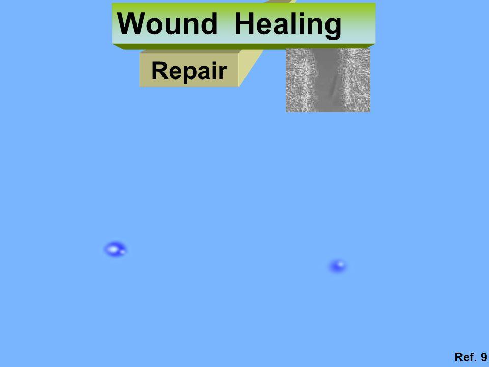 Wound Healing Repair Ref. 9
