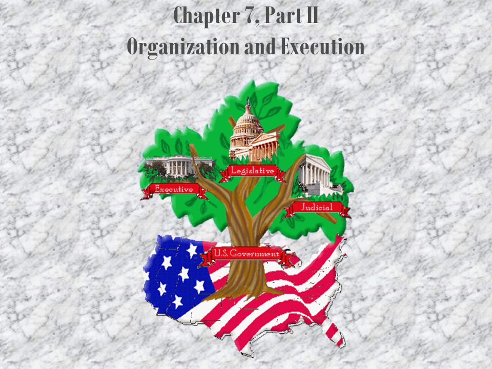 Chapter 7, Part II Organization and Execution