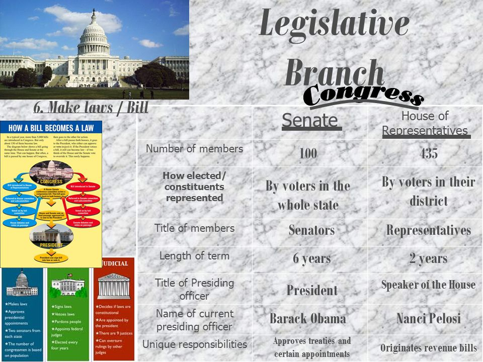 Legislative Branch Congress Senate 6. Make laws / Bill 100 435