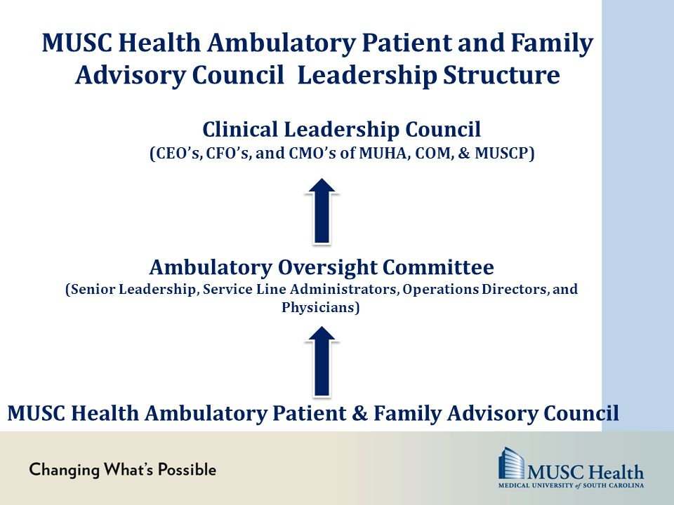 MUSC Health Ambulatory Patient and Family Advisory Council Leadership Structure