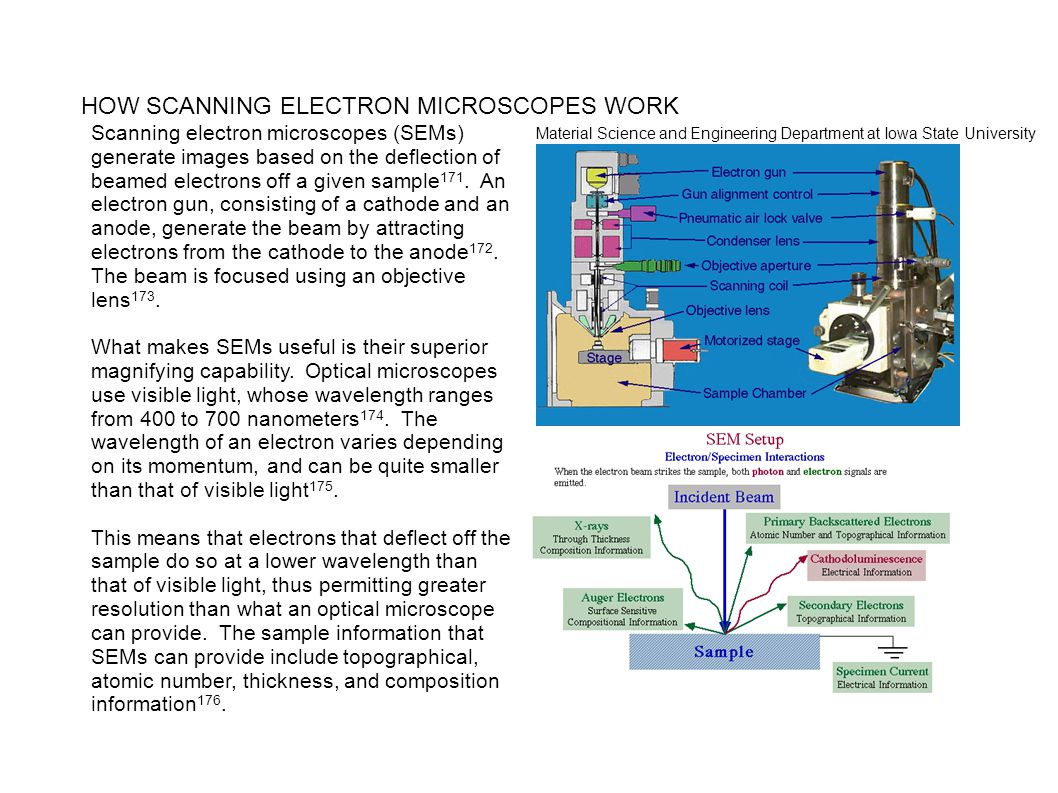 HOW SCANNING ELECTRON MICROSCOPES WORK