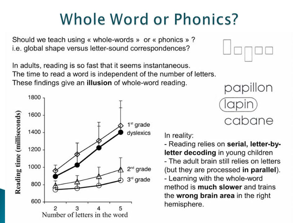 Whole Word or Phonics