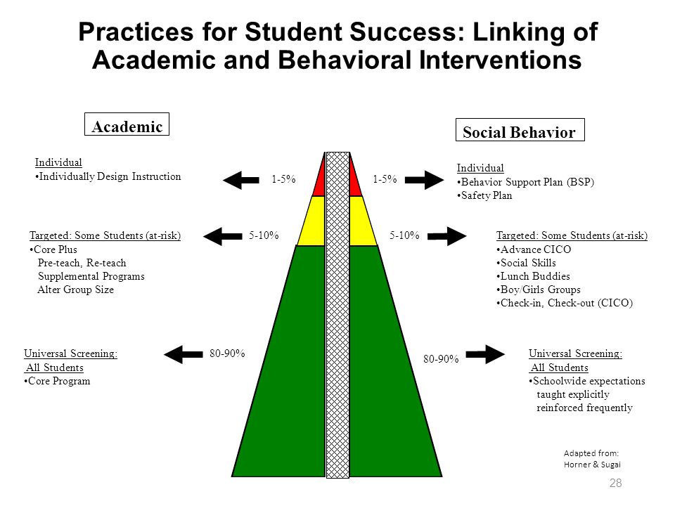Practices for Student Success: Linking of Academic and Behavioral Interventions