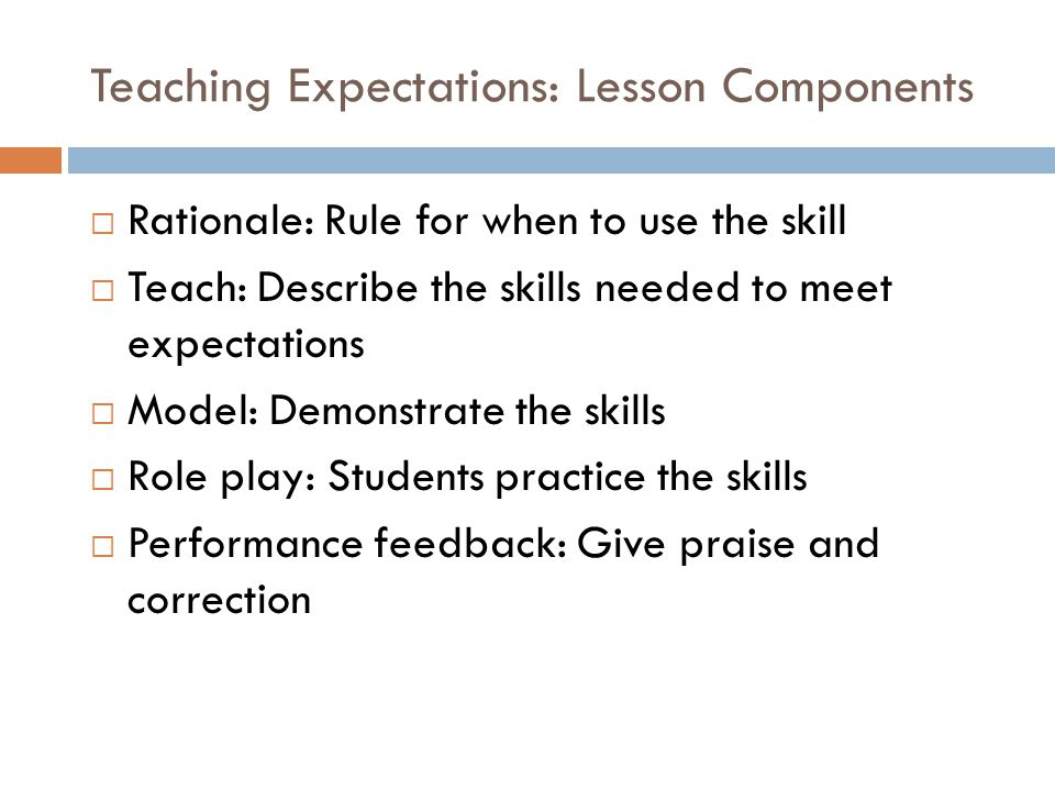Teaching Expectations: Lesson Components
