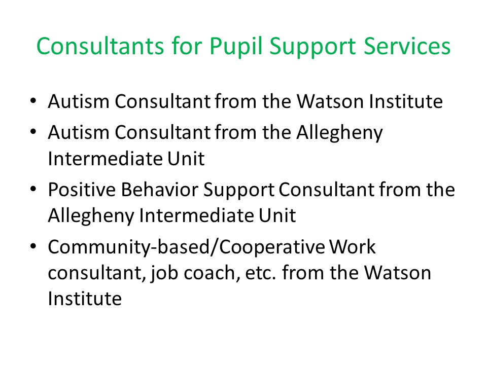 Consultants for Pupil Support Services