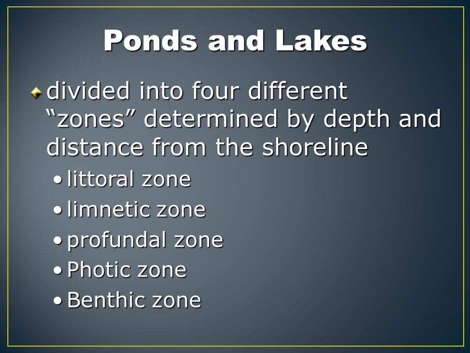 Ponds and Lakes divided into four different zones determined by depth and distance from the shoreline.